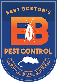East Boston Pest Control